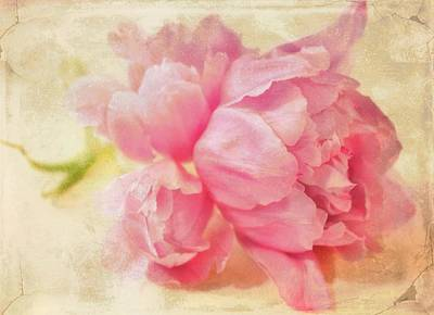 Portland Art Digital Art - Vintage Pink by Cathie Tyler