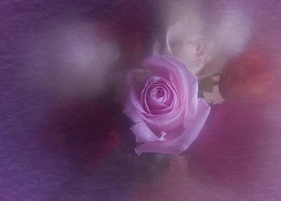 Art Print featuring the photograph Vintage Pink Rose Feb 2017 by Richard Cummings