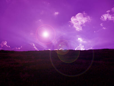 Photograph - Violet Sunset by Laura Greco