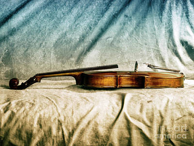 Photograph - Violin In Repose  by Steven Digman