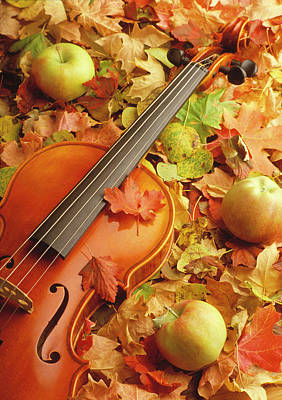 Photograph - Violin With Fallen Leaves by Utah Images