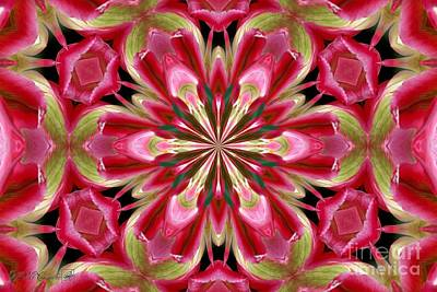 Digital Art - Virichic Kaleidoscope by J McCombie