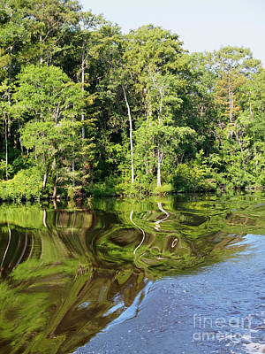 Photograph - Waccamaw River In South Carolina by Louise Heusinkveld