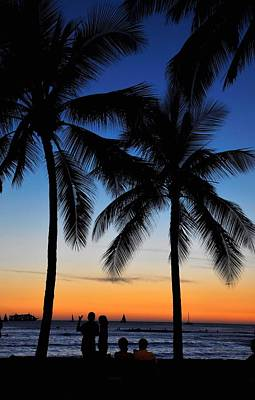 Photograph - Waikiki Palm Trees by Andrew Dinh