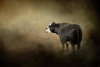 Photograph - Waiting For Winter by Jai Johnson