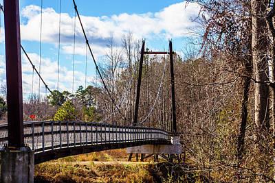 Garden Fruits - Walking Bridge by LaMont Johnson
