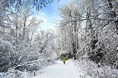 Venice Beach Bungalow - Walking the Snow Trail by Diwar Lee