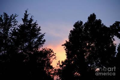 A Summer Evening Photograph - Warm Summer Sunset  by JW Hanley