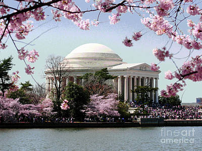 Photograph - Washington Dc Cherry Blossoms by Larry Oskin