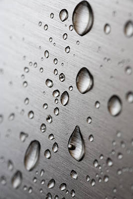 Rainy Day Photograph - Water Drops by Frank Tschakert