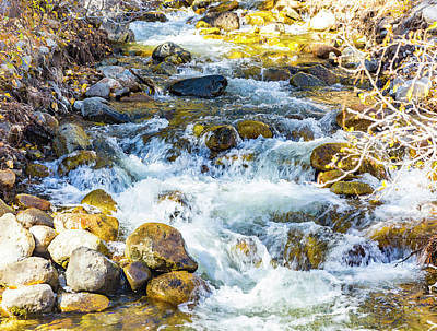 Photograph - Water In Motion by Nancy Marie Ricketts
