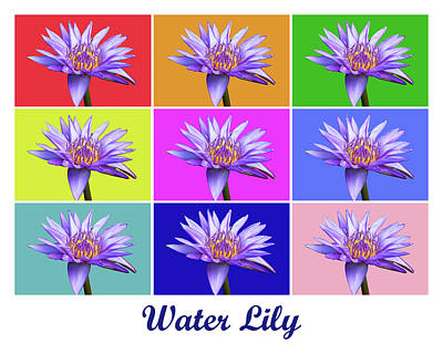 Photograph - Water Lily X9 Titled by Lou Ford