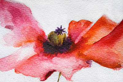 Watercolor Poppy Flower Art Print