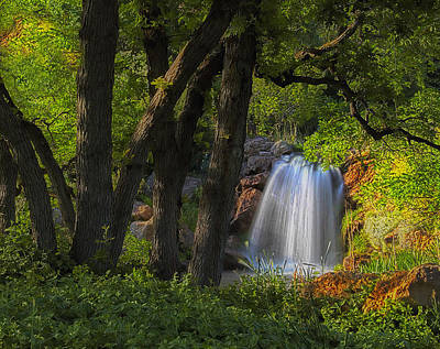 Photograph - Waterfall And Oak Trees by Utah Images