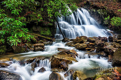 Waterfall And Rhododendron Art Print