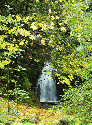 Photograph - Waterfall by Angi Parks