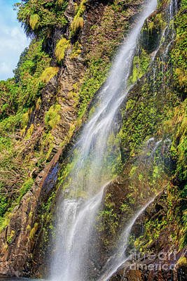 Photograph - Waterfall At Doubtful Sound by Patricia Hofmeester