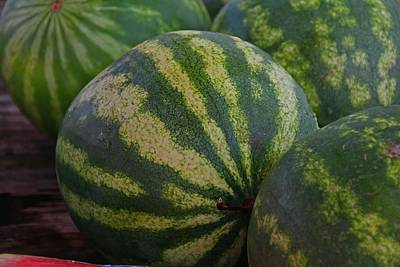 Photograph - Watermelon I by Michiale Schneider