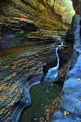 Photograph - Watkins Glen Gorge by Jessica Jenney