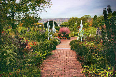 Photograph - Wave Hill Garden by Jessica Jenney
