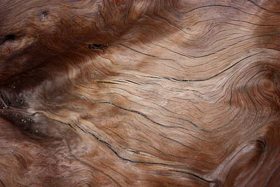 Photograph - Waves And Wood #3 by Larry Bacon