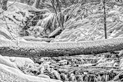 Photograph - Weaver's Creek Falls by Irwin Seidman
