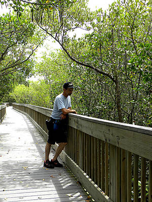 Photograph - Weedon Island Boardwalk  by Chris Mercer