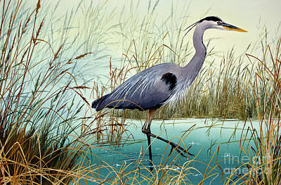 Wetland Beauty Art Print by James Williamson