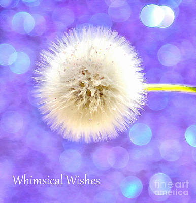 With Photograph - Whimsical Wishes by Krissy Katsimbras