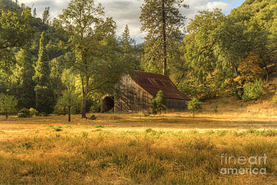 Photograph - Whiskeytown Barn by Randy Wood