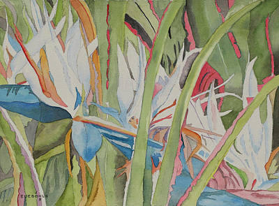 Bird Of Paradise Drawing - White Bird Of Paradise by John Edebohls