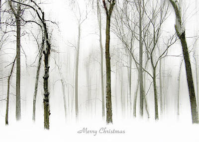 Christmas Digital Art - White Christmas by Jessica Jenney