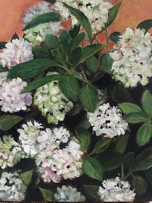 Painting - White Hydrangeas  by Gloria Smith