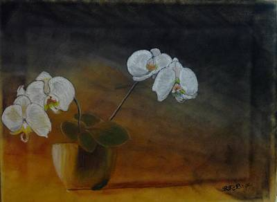 Pastel - White Orchids by Richard Le Page