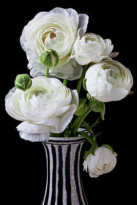 White Flower Photograph - White Ranunculus In Black And White Vase by Garry Gay