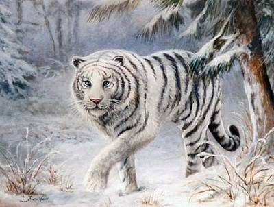 Painting - White Tiger by Sharon Weaver