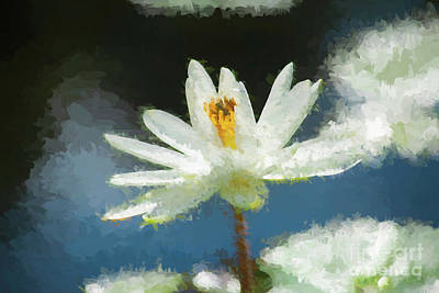 Digital Art - White Water Lily by Ed Taylor
