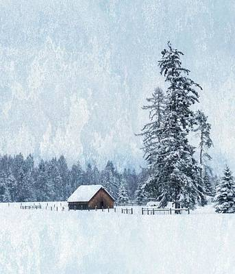 Photograph - Whitefish Winterscape by Joe Duket