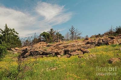 Photograph - Wichita Mountains In Springtime by Iris Greenwell