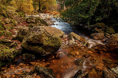 Photograph - Wicklow Stream by Martina Fagan