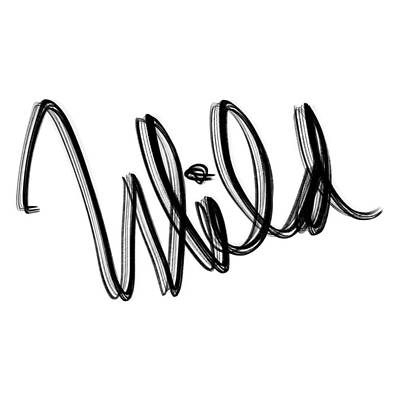Drawing - Wild by Bill Owen