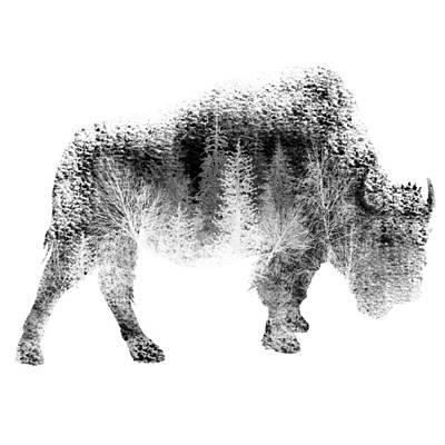Bison Digital Art - Wild Bison by Diana Van