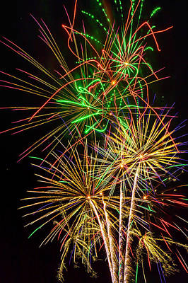 Photograph - Wild Fireworks by Garry Gay