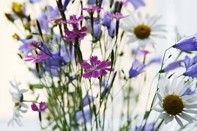 Photograph - Wild Flowers by Masha Batkova
