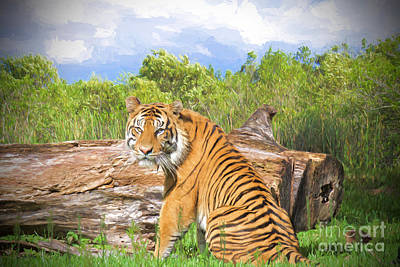 Wild Kingdom Art Print by Judy Kay
