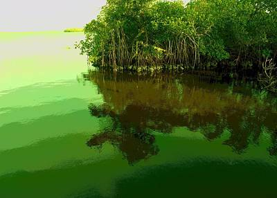 Photograph - Wild Mangroves II by Florene Welebny