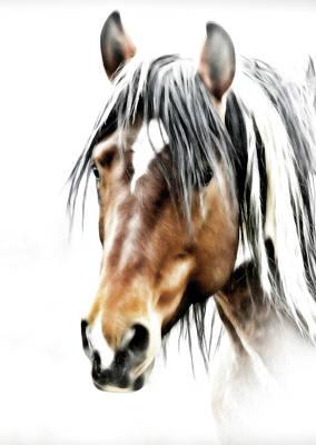 Photograph - Wild One by Athena Mckinzie