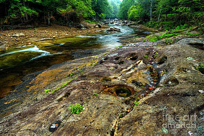 Williams River Rock Art Print by Thomas R Fletcher