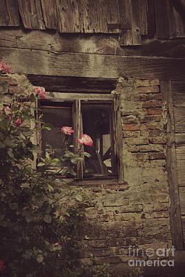 Window Art Print by Mythja Photography