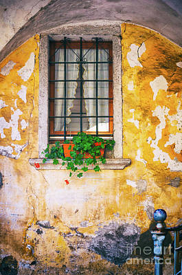 Photograph - Window With Geraniums by Silvia Ganora